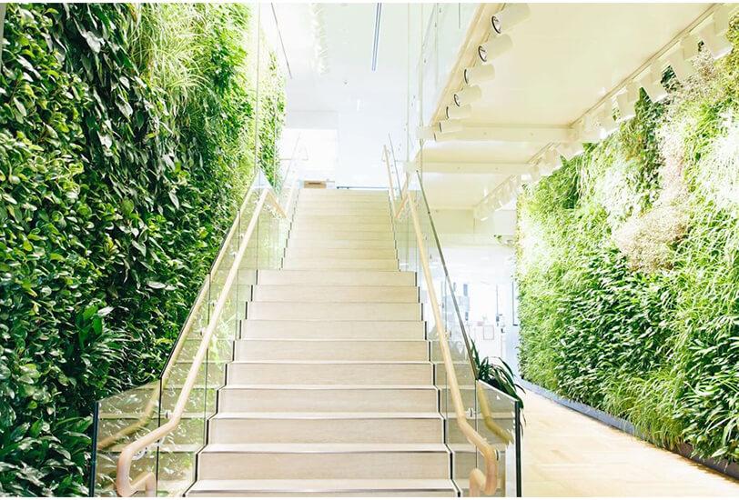 green walls elevated interior architecture